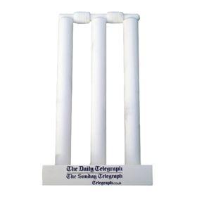 Picture of Mini Cricket Stumps