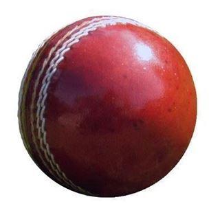 Amt Trade Full Size Cricket Ball