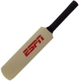 Picture of Mini Cricket Bat