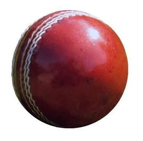 Picture of Full Size Cricket Ball
